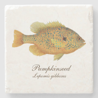 Pumpkinseed Sunfish Coaster Stone Beverage Coaster