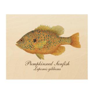 Pumpkinseed Sunfish Wood Wall Art