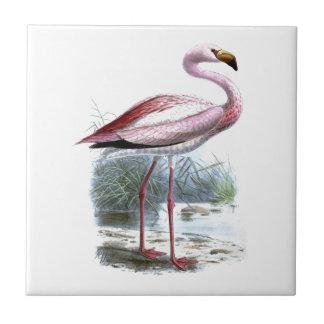 Puna Flamingo Ceramic Tile