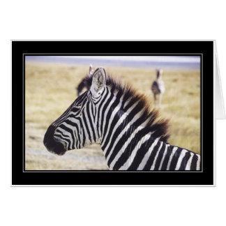 Punda Milia (Zebra) Profile Greeting Cards