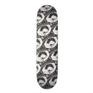 punk rock music skate boards