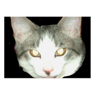 Punkysthe cat head shot business card