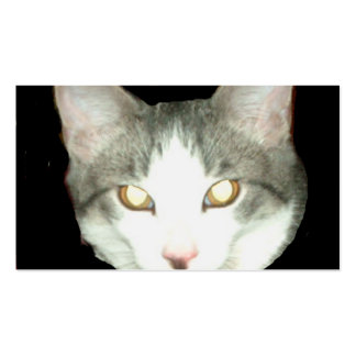 Punkysthe cat head shot business card template