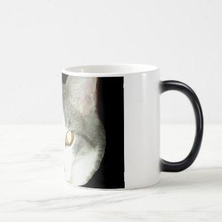 Punkysthe cat head shot mug