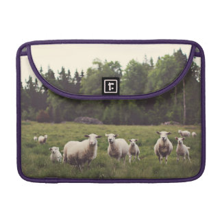 Punny Sheep with Attitude photo country pasture Sleeve For MacBook Pro