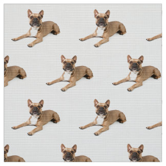 Puppie Fabric