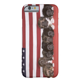 Puppies in front of an american flag barely there iPhone 6 case