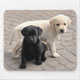 puppies mousepad