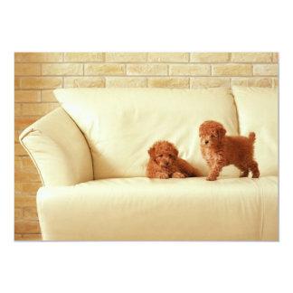 Puppies On The Sofa 13 Cm X 18 Cm Invitation Card