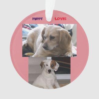 Puppies & Sis