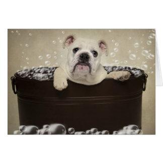 Puppy bath card