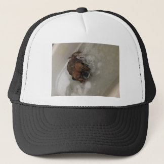 PUPPY BUBBLES TRUCKER HAT