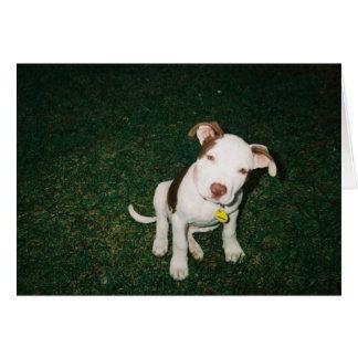 puppy :-) card