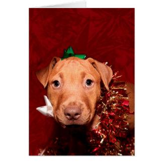 Puppy Christmas help Card