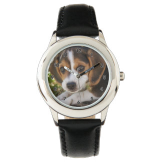Puppy Dog Beagle Watch
