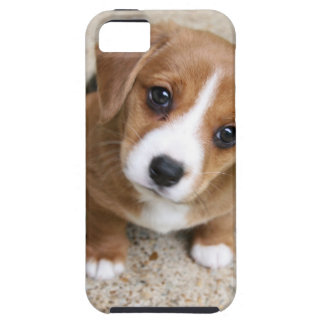 Puppy Dog Eyes Tough iPhone 5 Case