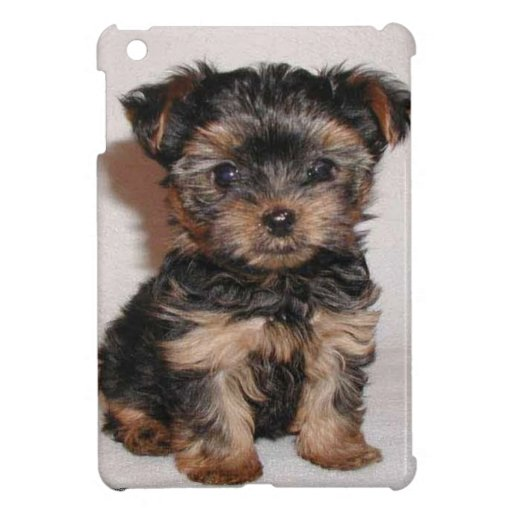 Puppy Eyes Cover For The iPad Mini