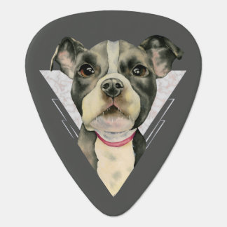 Puppy Eyes Watercolor Painting 2 Plectrum