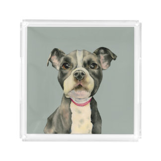 Puppy Eyes Watercolor Painting Acrylic Tray