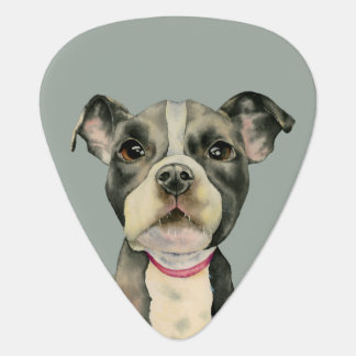 Puppy Eyes Watercolor Painting Plectrum