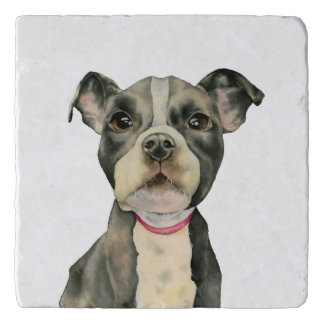 Puppy Eyes Watercolor Painting Trivet