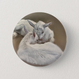 puppy goat in the farm 6 cm round badge