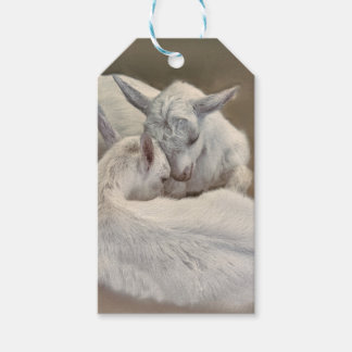 puppy goat in the farm gift tags
