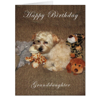 Puppy Granddaughter Birthday Card