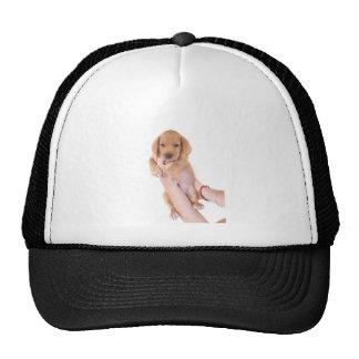 puppy trucker hats