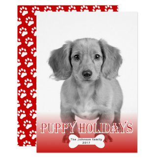 Puppy holidays bone red pet Christmas photo Card
