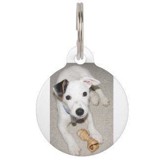 puppy jack russell terrier pet name tag