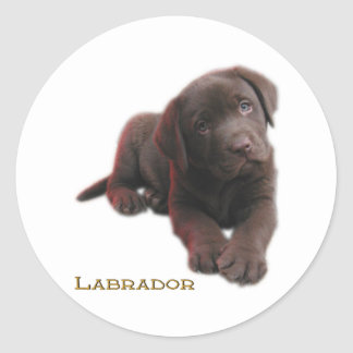 Puppy Lab Classic Round Sticker