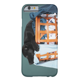 Puppy lying in laundry basket barely there iPhone 6 case