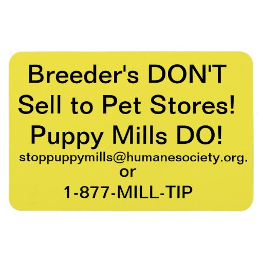 Puppy Mill Car Magnet Rectangle Magnets