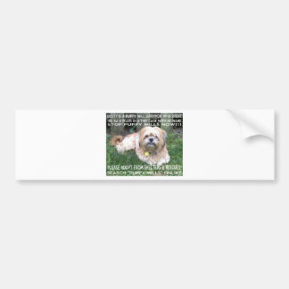 Puppy Mill Survivor - Give Mill Dogs a 2nd Chance! Bumper Sticker