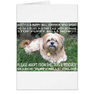 Puppy Mill Survivor - Give Mill Dogs a 2nd Chance! Greeting Cards