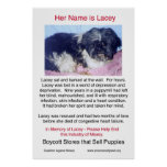 Puppy Mills Breed Misery Poster