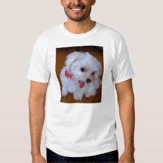 Puppy of lovely Maltese Tshirt