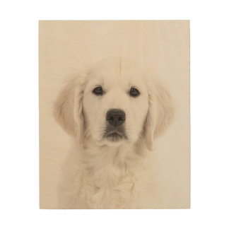 Puppy on Wood Subtle Soft Muted Image Dog Lover Wood Wall Decor