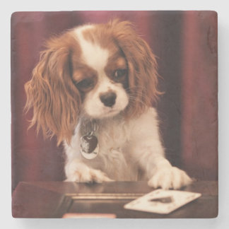 Puppy Plays Cards Stone Coaster