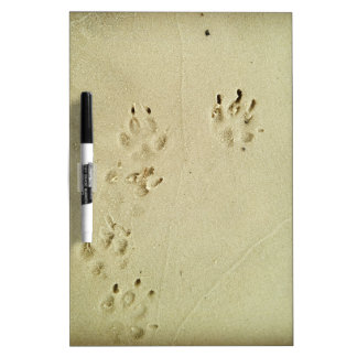Puppy prints in the sand dry erase board