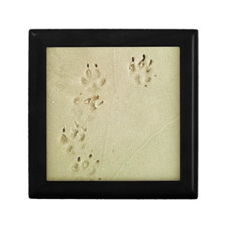 Puppy prints in the sand gift box