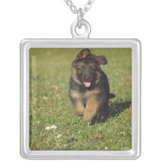 Puppy Running Square Pendant Necklace