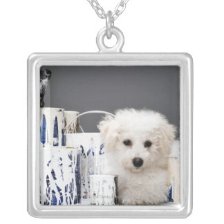 Puppy sitting amongst paint tins silver plated necklace