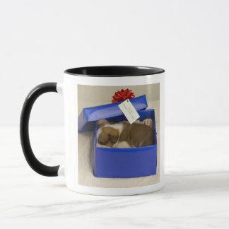 Puppy sleeping in a gift box mug