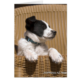 Puppy Sleeping In Chair Greeting Card