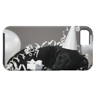 Puppy sleeping in party decorations case for the iPhone 5