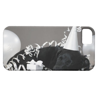Puppy sleeping in party decorations iPhone 5 cases