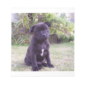 puppy staffordshire bull terrier notepad