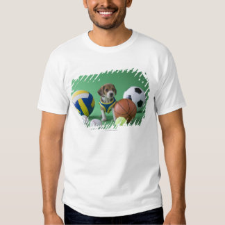 Puppy surrounded by sport balls t-shirt